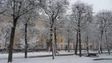 В Смоленске ожидается снежный вторник