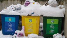В Смоленске раздельный сбор мусора сочли иллюзией