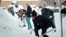 В Смоленске студенты-иностранцы очистили двор музея от снега