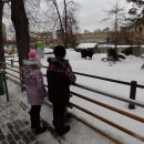 https://smolensk-i.ru/authority/aleksey-ostrovskiy-ispolnil-novogodnie-zhelaniya-smolyan-s-kremlyovskoy-yolki-zhelaniy_269191