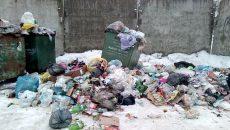 Смоленск «утонул» в мусоре на новогодних праздниках