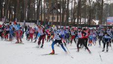 «Лыжня России-2019» в Смоленске собрала более 2000 участников