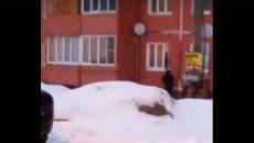Нелегальную торговлю спиртным в Смоленске сняли на видео