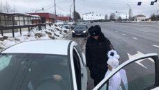 Смоленские водители встретили ангела на трассе М-1