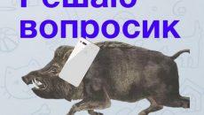 Под Смоленском пристав поймал в соцсетях должника-бизнесмена
