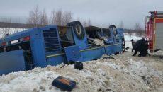 Появилось видео осмотра следователями места аварии со смоленским автобусом