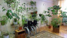 В Смоленской области никто не заявляется на конкурсы по поставке подгузников для взрослых