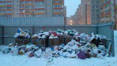 Жителям многоэтажки в Смоленске месяц не вывозили мусор