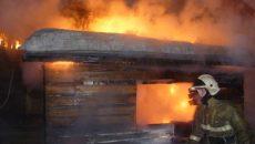 В пожаре под Смоленском сгорели больше 60 домашних животных