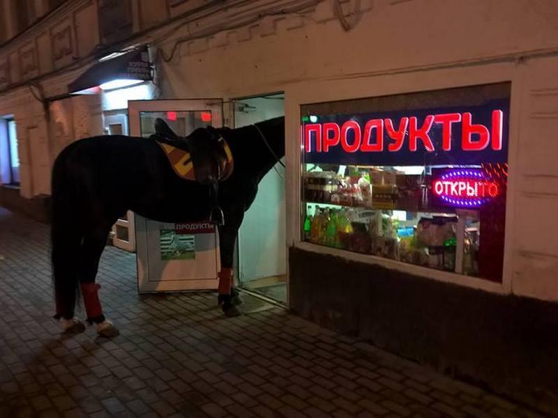 продуктовый магазин, лошадь, конь (фото pikabu.ru)