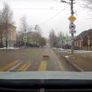 https://smolensk-i.ru/auto/v-smolenske-snyali-na-video-soblyudayushhego-pdd-kota_276517