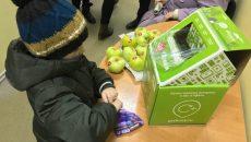 Смоляне обменяли батарейки на яблоки