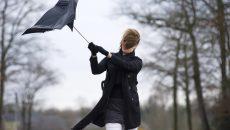 МЧС предупредило о шквалистом ветре в Смоленске