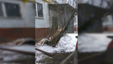 В Смоленске нашли самый безобразный вход в подъезд