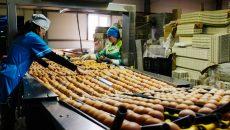 На смоленском фестивале пожарят яичницу из семи тысяч яиц