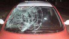 Под Смоленском на обочине дороги сбили женщину