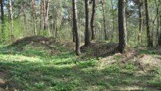 Под Смоленском приостановили незаконные земляные работы на Гнёздовских курганах