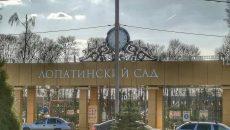 В Смоленске приведут в порядок Массовое поле Лопатинского сада