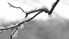 В Смоленске ожидается мокрый снег