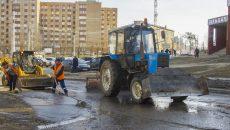 Глава Смоленска дал коммунальщикам две недели на уборку города