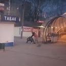 https://smolensk-i.ru/accidents/v-smolenske-draku-dvuh-muzhchin-vozle-ostanovki-snyali-na-video_281298