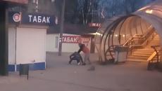 В Смоленске жёсткую драку мужчин у остановки сняли на видео