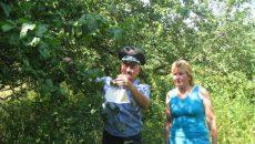 В Смоленске установят ловушки для восточной плодожорки