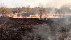 Под Смоленском жители деревни спасли от пожара два дома