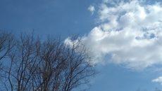 Синоптики рассказали о погоде на ближайшую пятницу в Смоленске