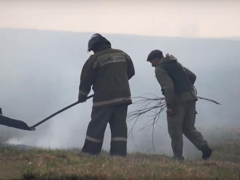 пожар рядом с приютом Верность в Смоленском районе (кадр из видео youtube.com channel UCNRYiGDHGIRVjgOavRxUwKw)