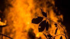 В Смоленске сгорел дачный дом
