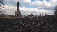 Под Смоленском от пала травы целиком сгорела деревня