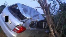 Жесткое ДТП под Смоленском: «Шкода» на скорости вылетела с дороги