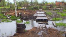 Под Смоленском операция по спасению коровы из болота заняла 5 часов
