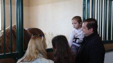 Алексей Островский посетил хозяйство по возрождению лошадей породы «советский тяжеловоз»