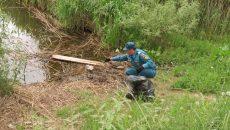 В Смоленске озеро ТЭЦ-2 очистили от гор мусора