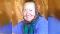Под Смоленском объявили поиски брянской пенсионерки Валентины Ерёминой