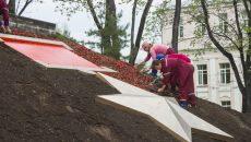 В парках и скверах Смоленска высадят более 370 тысяч цветов