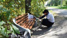Злостного неплательщика алиментов заставили благоустроить смоленский парк