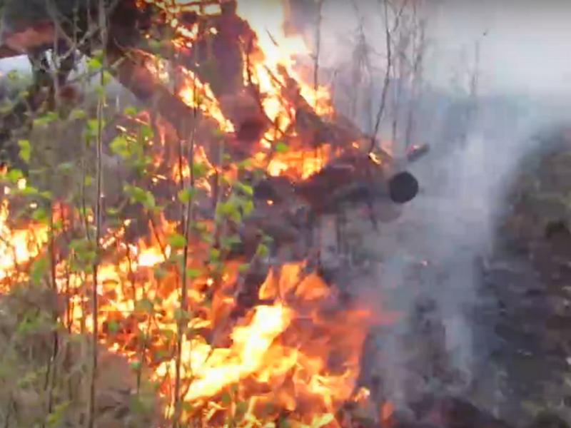 лесной пожар на окраине Озёрного, май 2019 г.