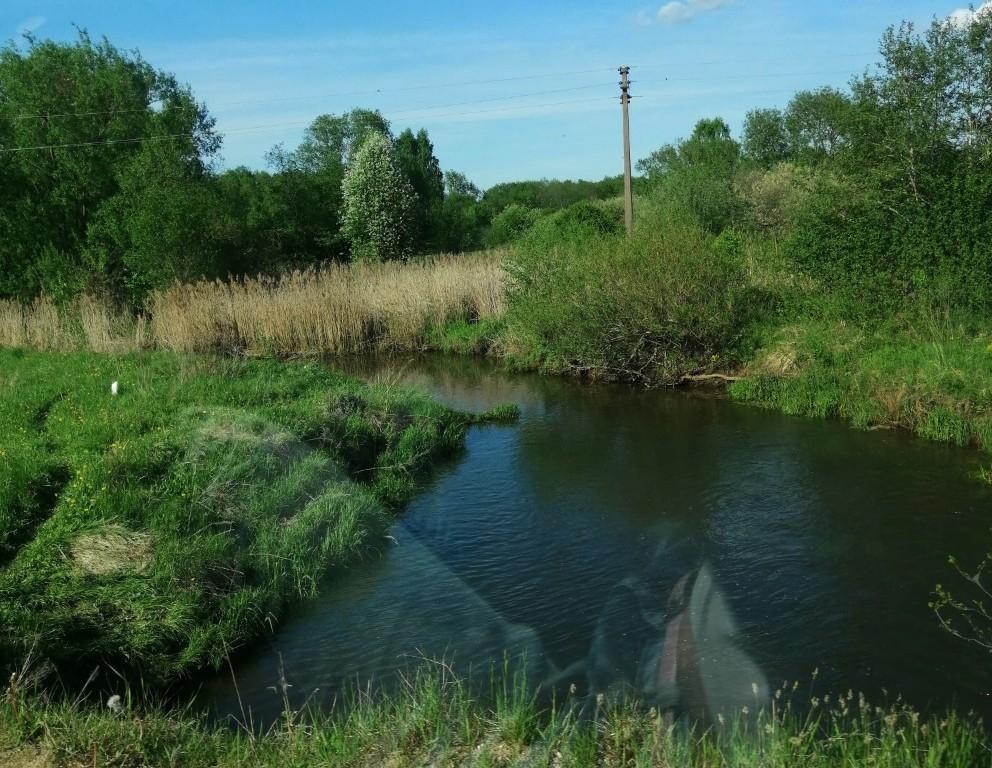 река Нагать в Смоленском районе (фото vk.com larisa_dolzhikova)