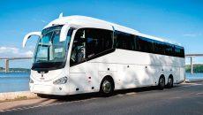 В Смоленске запустят автобус до Геленджика