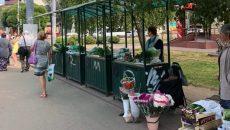 Дачники Смоленска смогут продавать свой урожай на специальных торговых площадках