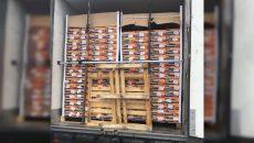 Под Смоленском задержали 80 тонн «санкционки»