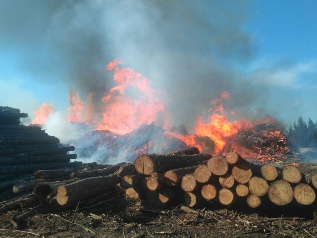 пожар пилорама (фото vk.com_safonovo_overheard)