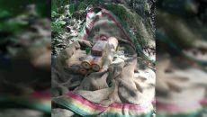 Найденный под Смоленском «схрон» боеприпасов таил смертельную опасность