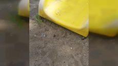 В Смоленске появилась «экстремальная» горка на детской площадке