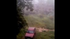 Под Смоленском сильный ураган с ливнем сняли на видео
