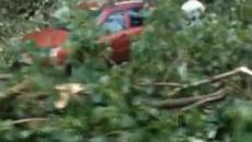 Разрушительные последствия урагана под Смоленском сняли на видео