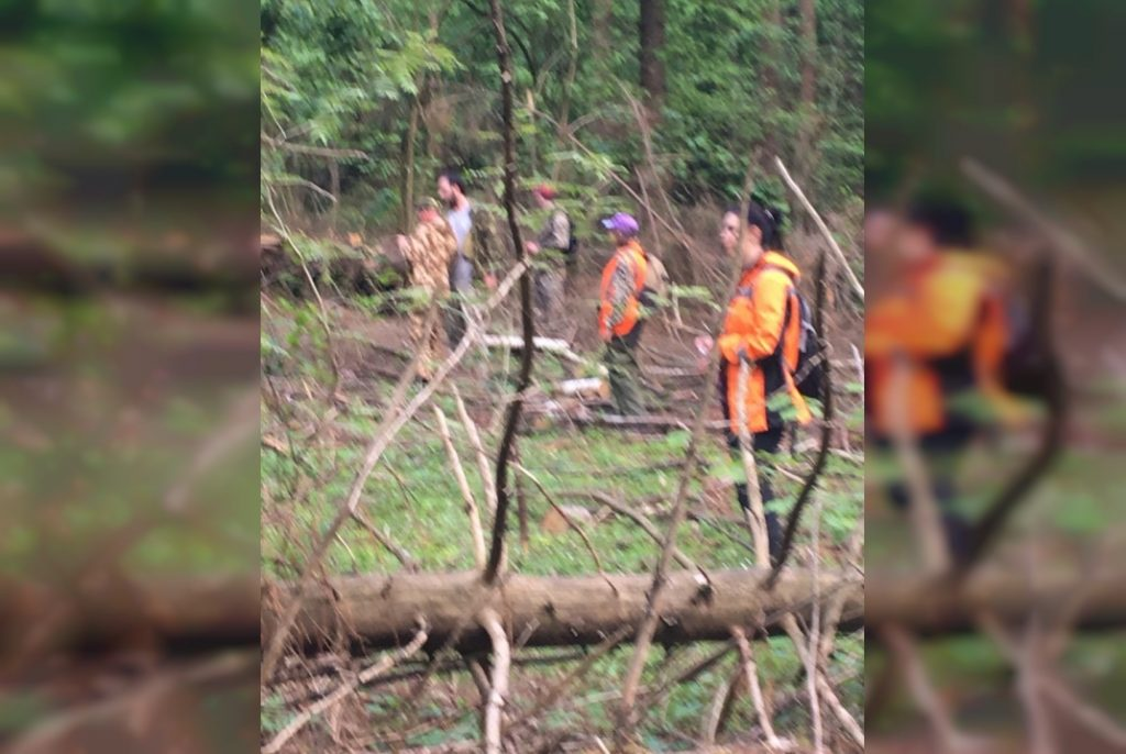 поиски, пропажа, лес, Сальвар (фото vk.com pso_salvare)